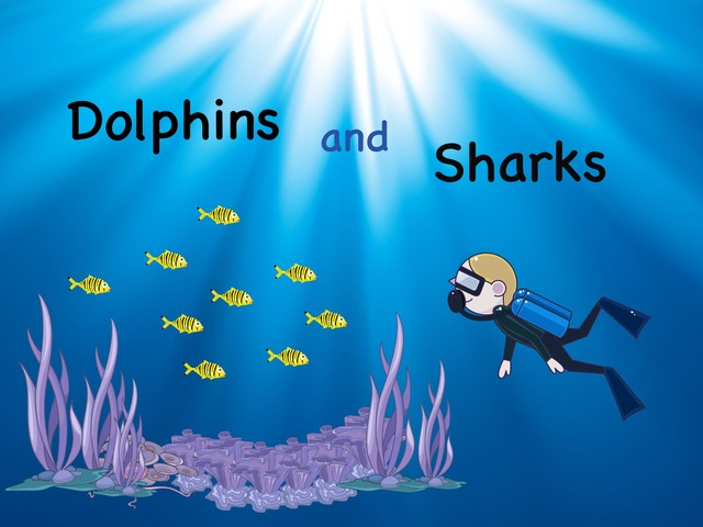 Dolphins and Sharks by Kate Kelly
