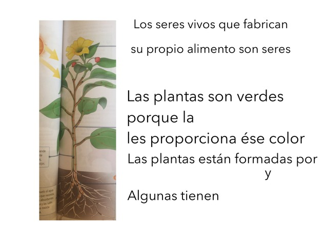 Plantas by PLASTIBACIER ARTISTCHAB