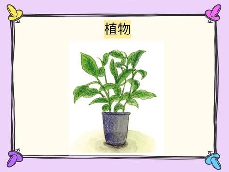 中級故事#68植物 by 樂樂 文化