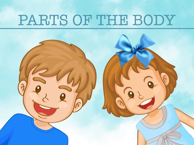 Parts Of The Body Activities by Cici Lampe