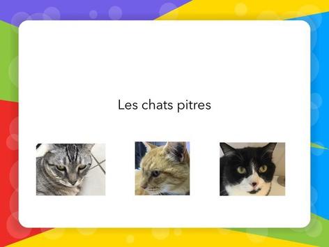 Les Chats Pitres Niveau 1 by Fabien EMPRIN