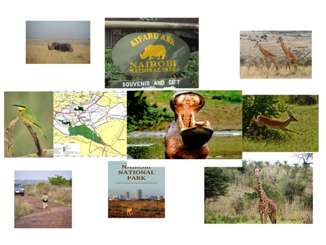 #13 Kenya by FarBrook School