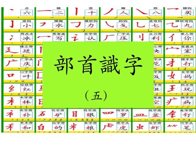 部首識字(五)犭 虫 魚 糹 by Primary Year 2 Admin