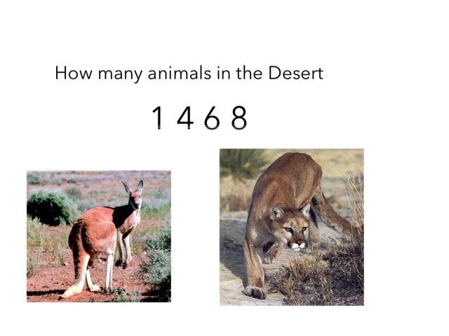Desert Animals by Jane Miller _ Staff - FuquayVarinaE