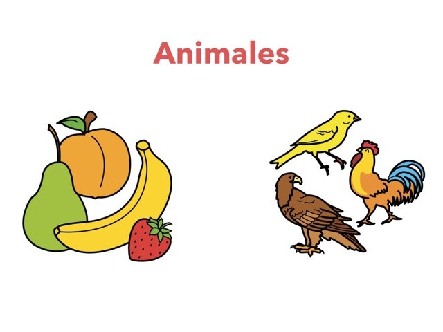 Animales by Nathaly Millones