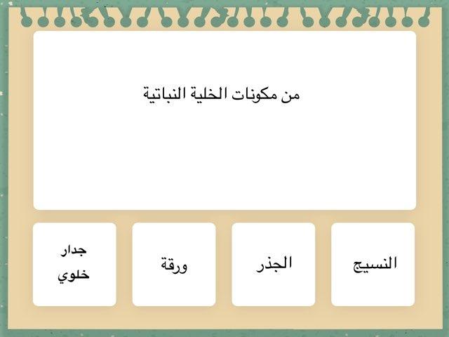 تجربة by مناهل أم عبدالله