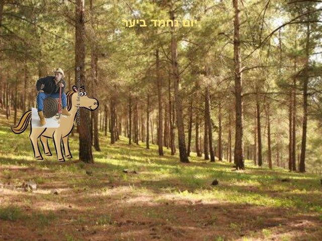 יום ביער by הלן פרידמן