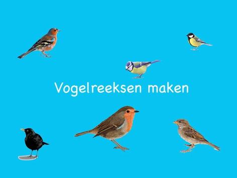 Vogelreeksen maken by Nelleke Lürsen