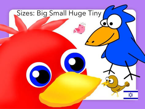 Bird Sizes: Big Small Huge Tiny by English with Gabi אנגלית עם גבי