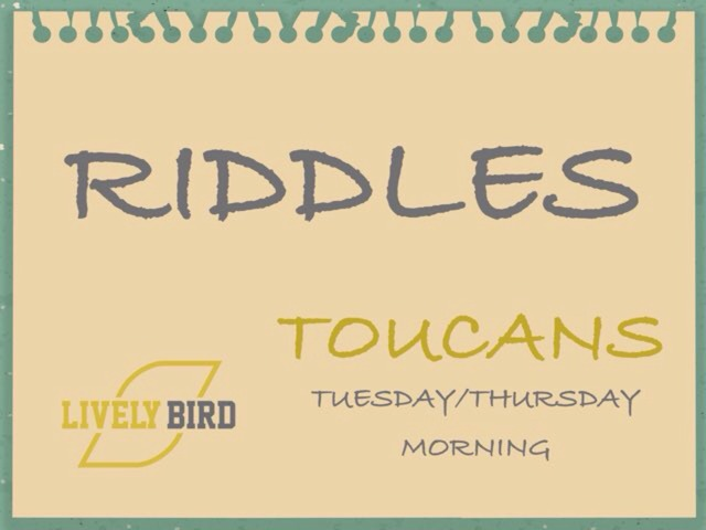 RIDDLES TOUCANS T/T MORNING by Lively Bird Uirapuru