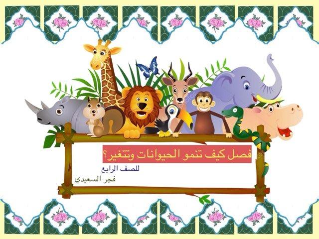 فصل كيف تنمو الحيوانات وتتغير  by Fajer Alsaeedi