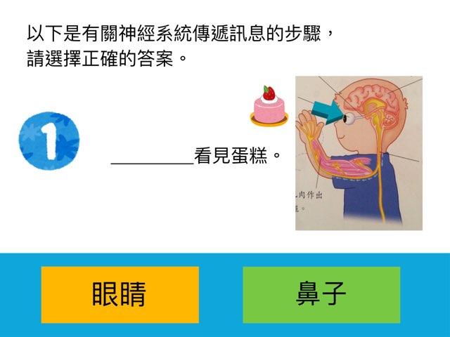 神經系統傳遞信息的步驟 by Hoiman ng