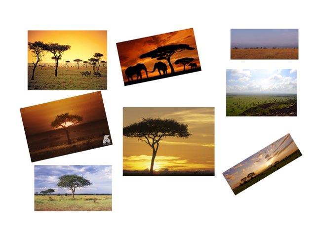 #18 Kenya by FarBrook School