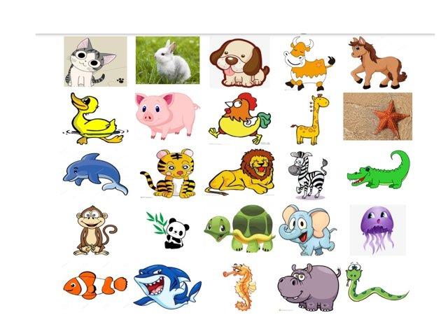 动物世界 by Suwen He