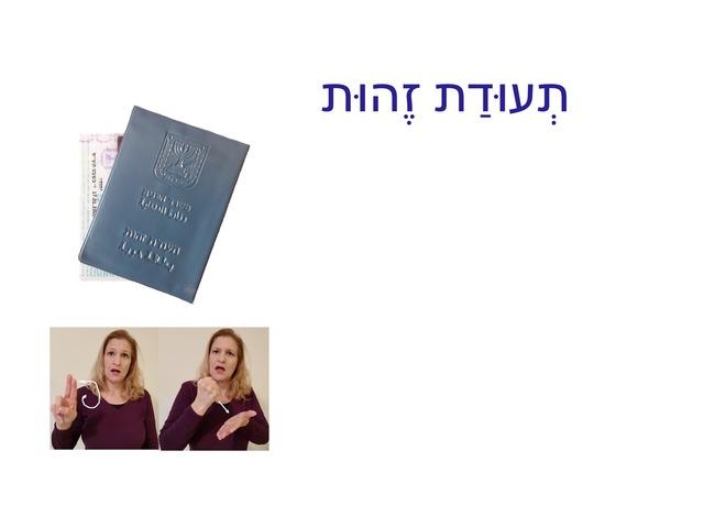 תעודת זהות by orna levy