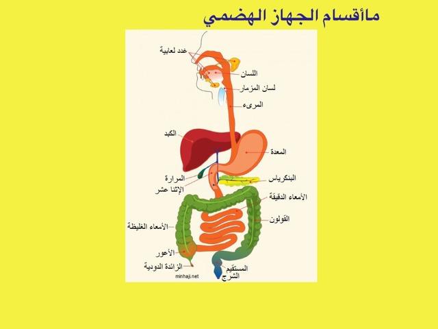 علوم by مصادر ب١