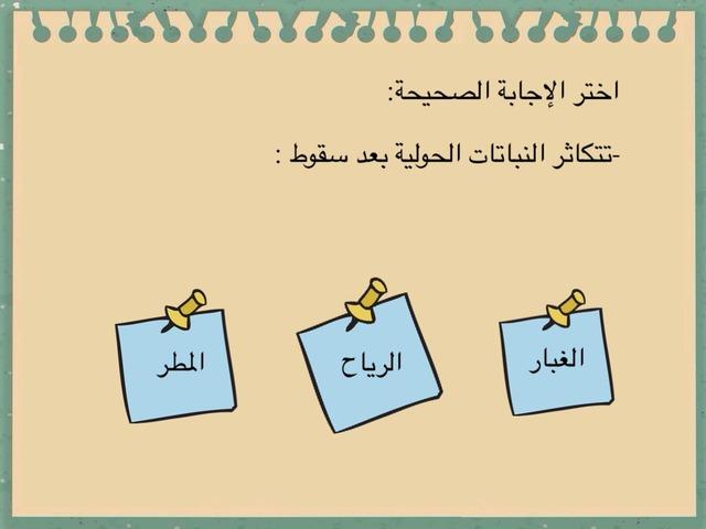 اختر الإجابة الصحيحة by Anfal alzuabi