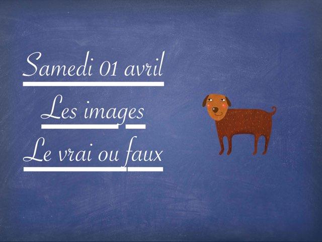 A - Sam01 - Images Et Vrai Faux  by Caroline Gozdek