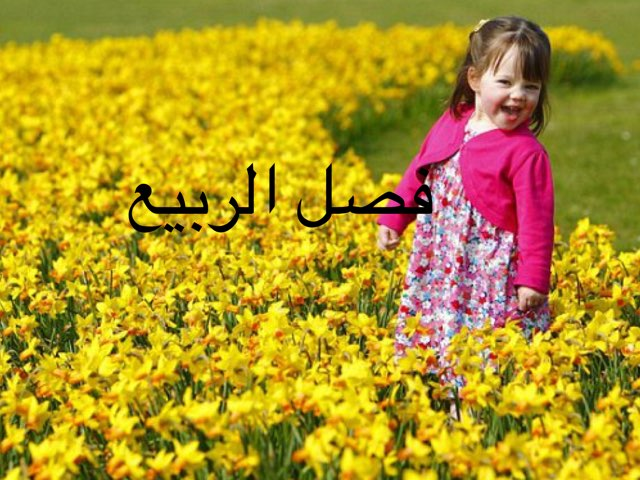 משחק 38 by Sahar Abo Alhija