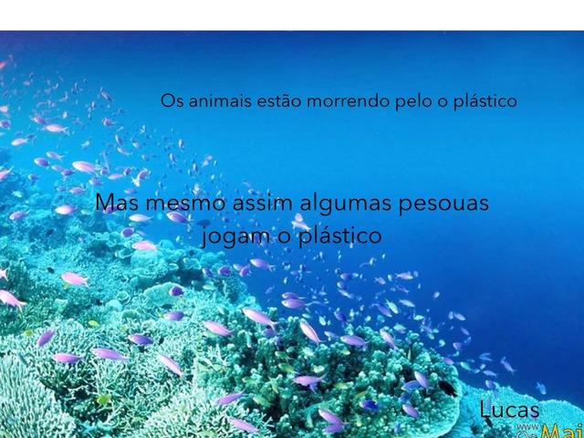 Lucas 2b by l