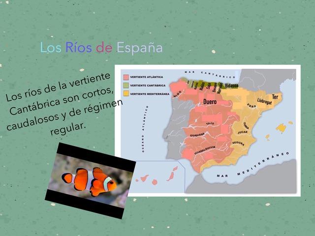 Los Ríos by Irene Rodriguez Horcajo