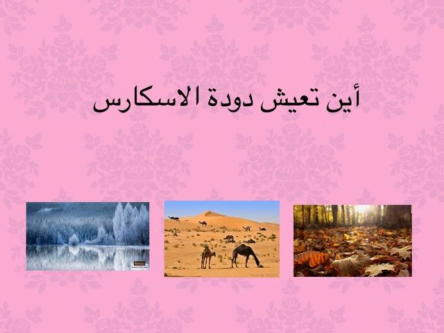 ديدان by Azeeza Alzuraik