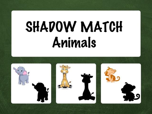 Shadow Match - Animals by Hadi  Oyna