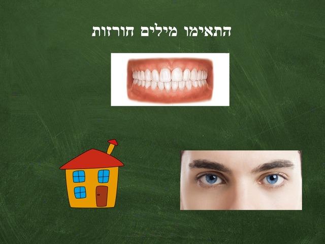 מודעות פונולוגית מילים חורזות by Sivan Levy-Israel