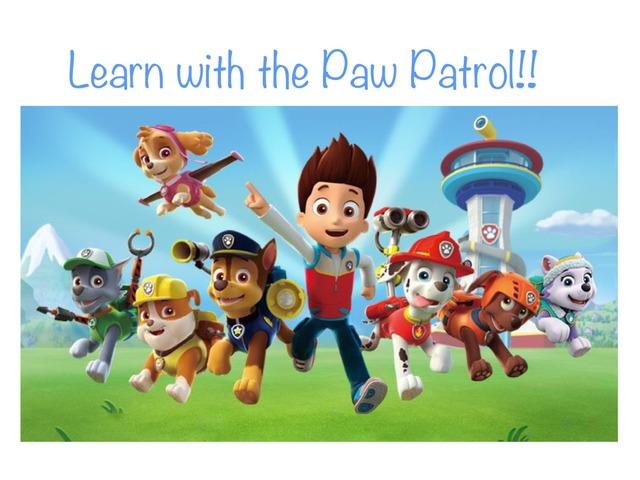 Pay Patrol by Beatriz Villena Cárdenes