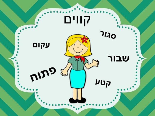 קווים by יעל קובו
