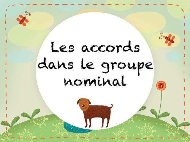 Les Accords Dans Le Groupe Nominal by Marielle Bringer
