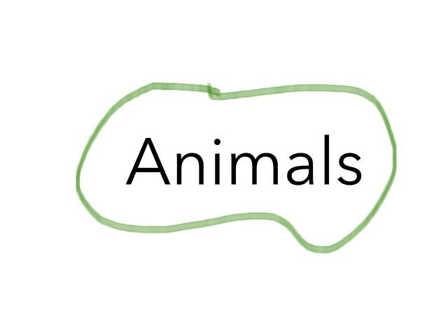 Animals by Алина Пешкова