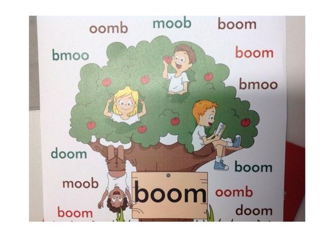 Boom by Gino Vanherweghe
