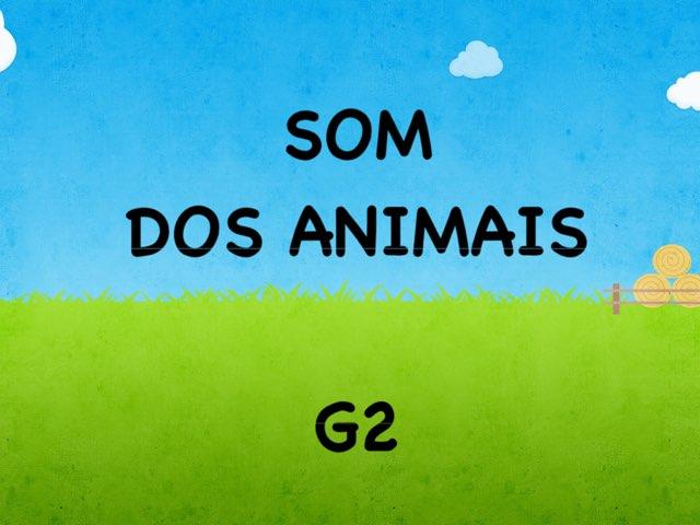 Som Animais_G2_2016 by Fernanda Lourenco