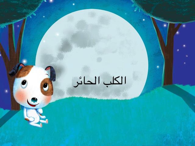 الكلب الحائر by عزيزة الغامدي