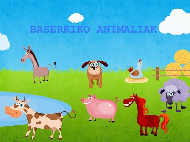 BASERRIKO ANIMALIAK SMI PORTUGALETE by Leire Ortega