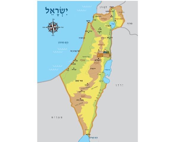 ארץ ישראל by Dana Palombo