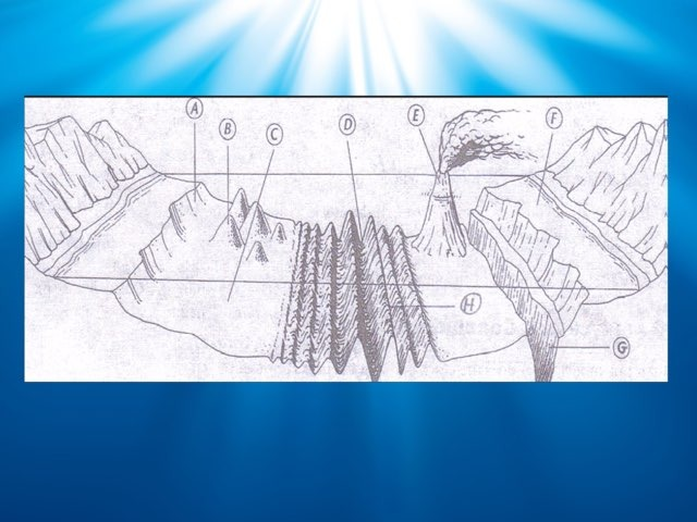 Oceanic landforms by Miranda Warnock