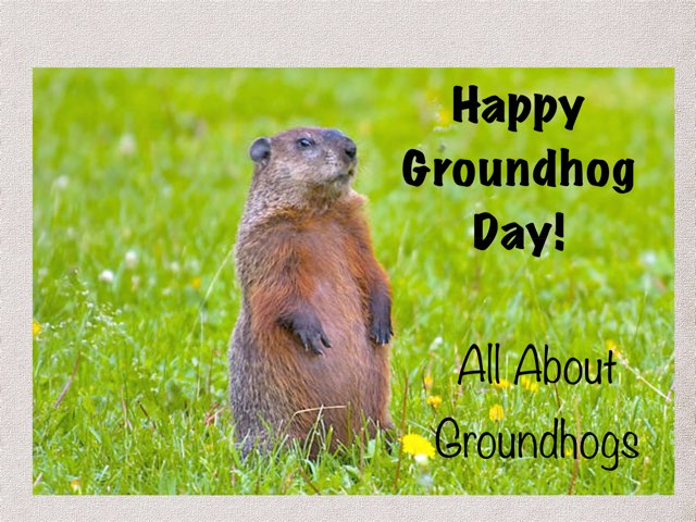 Groundhogs by Karen Souter