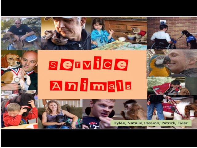 Service Animals by Jo-Ann Lizon
