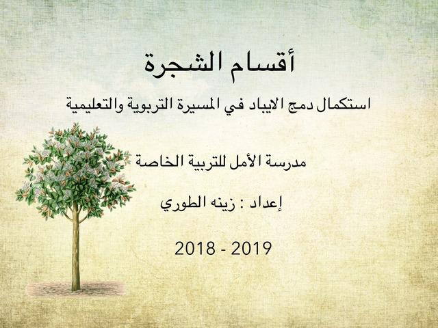 هيا نتعرف على أقسام الشجرة by hnadee abu jaffer