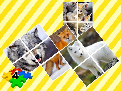 The Canine Family Puzzle  by Liat Bitton-paz