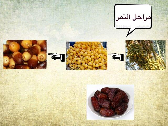 مراحل التمر  رقم ٤  by Wafa Alghamdi