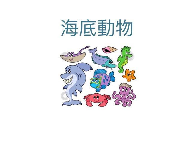 Sea Animals  by Carina Sheppard