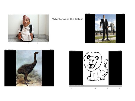 Which One Is The Tallest In The World by Abdullah