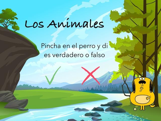 Los Animales by Cristina Morales Gómez