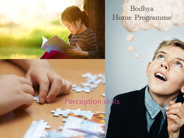 Perception Skills by Lavanya Sriram