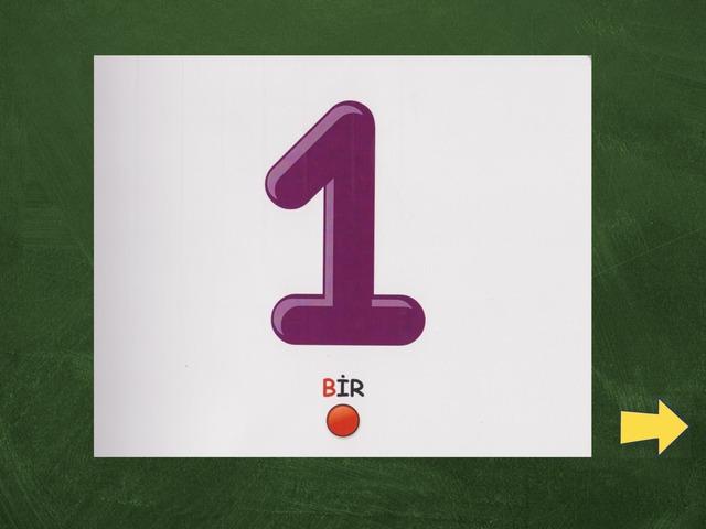 Lali 7  by Ünver Direm
