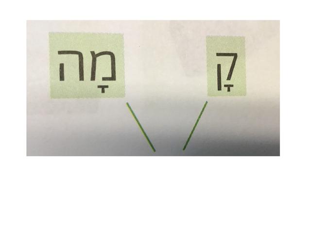 קסם וחברים דפי תרגול by Beit Issie Shapiro