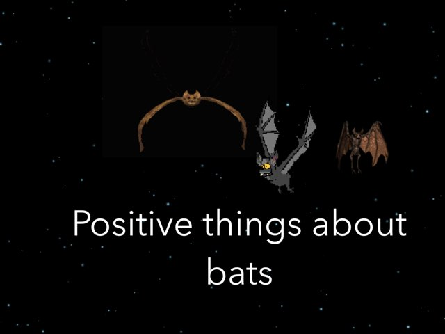 Bat stuff by Coach Nikic